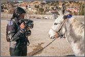 Турецкий гамбит - берем интервью