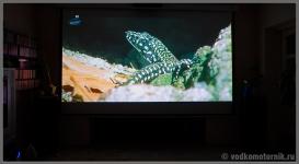 Картинка3 FullHD на экране с проектора - фильм Buon giorno, Italia! Или плановое обследование сапога