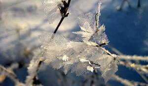 Зима рисует 2