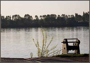 Утренний Дунай.
