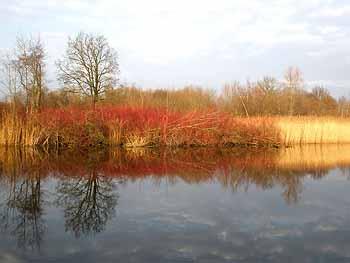 Красатища осенью на Шалтайке...