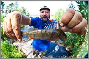 В Ладоге рыба есть!