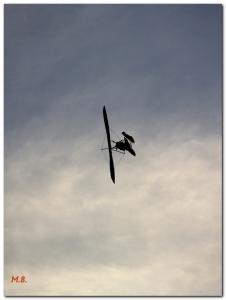 Бориска в воздухе