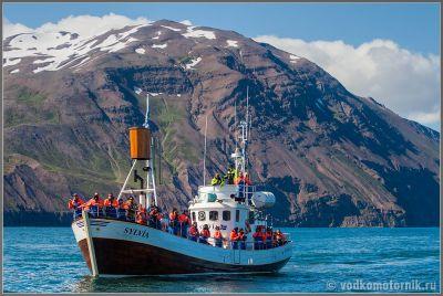 Исландия. Китовоя фотоохота Хусавик