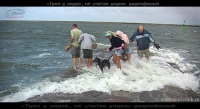 Трое в лодке, не считая водки видеофильм 1 серия 22