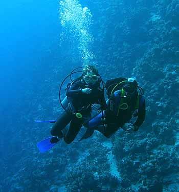 Дайвинг. Блю. Красное море 2007г.