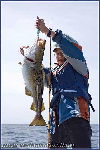 Кому везет на рыбалке - II