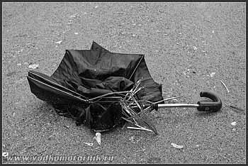 Сегодня в Калининграде - штормит...