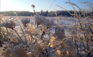 Зима творит...