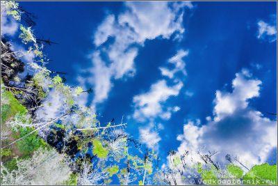 Облака на водной глади лесного озера