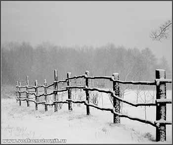 Зима. 2008г.