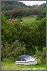 Водкомоторка в огороде
