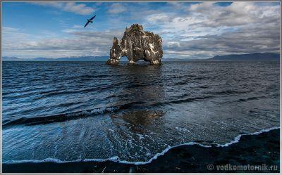Исландия - Hvitserkur