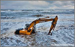 Море выбросило на берег...