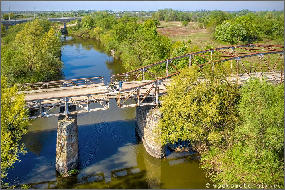 Вид на мост с высоты комариного полета